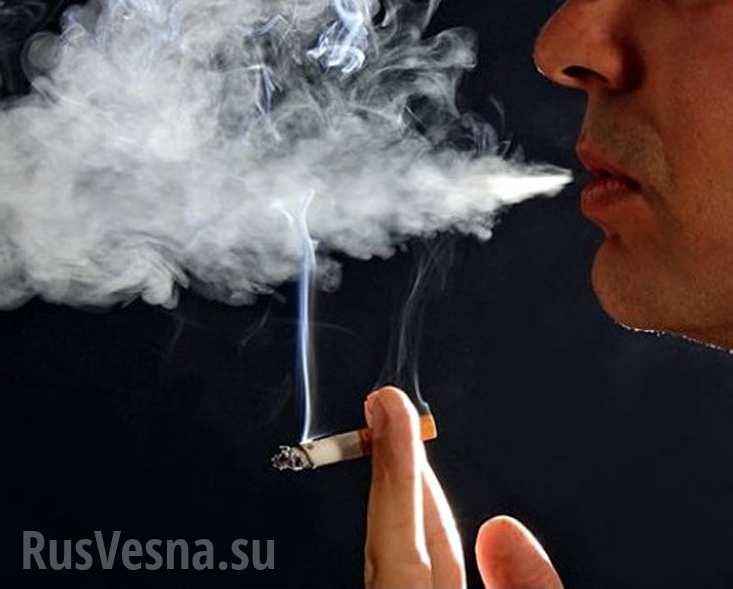 Россиянам, родившимся после 2015 года, могут навсегда запретить курить