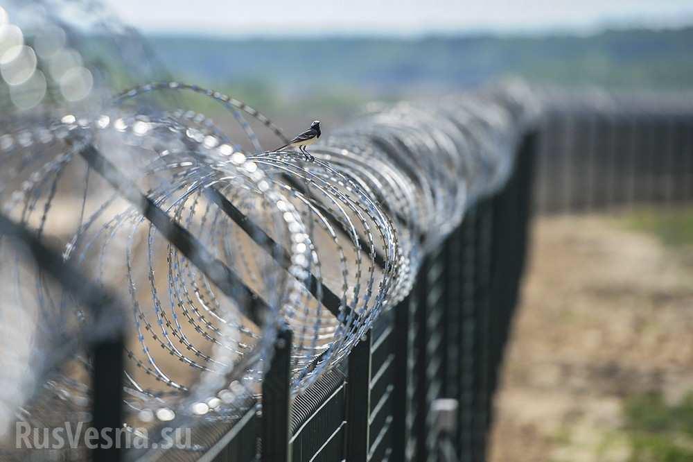 На границе России и Латвии установили забор