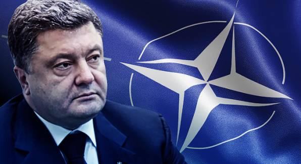 Стоны о НАТО свидетельствуют о том, что у Порошенко все очень плохо