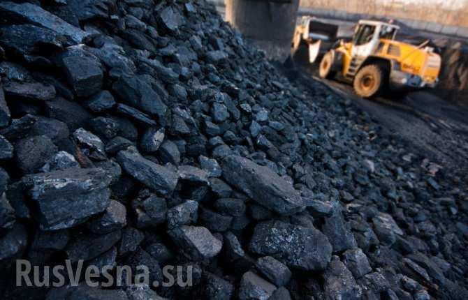 Попытки Киева закупать уголь в ЮАР приведут к экономическому краху Украины, — депутат ЛНР