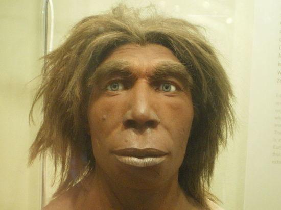 В Крыму обнаружено украшение неандертальцев из кости ворона
