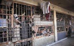 США обвинили Сирию всоздании крематория длясокрытия массовых казней