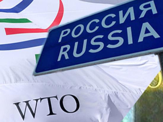 Торговля на спор: чего добилась Россия членством в ВТО