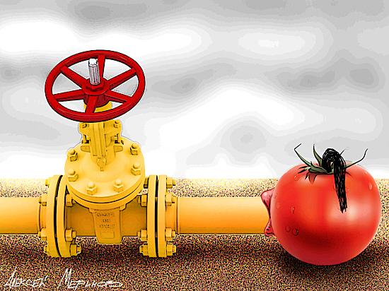 По самые помидоры: Анкара пригрозила закрыть «Турецкий поток»
