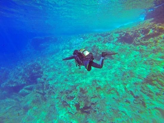 Болгарская аквалангистка умерла в море при попытке установить мировой рекорд