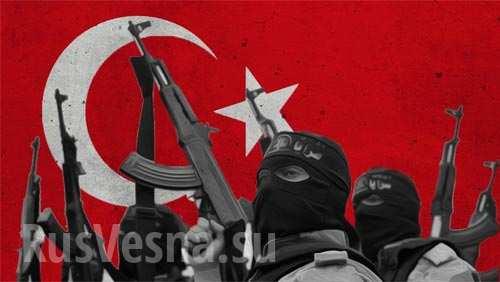 Турция взрослеет на глазах: Эрдоган бросает вызов