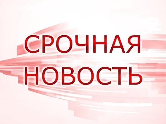 Под Владимиром поезд протаранил автобус: погибли не менее 17 человек
