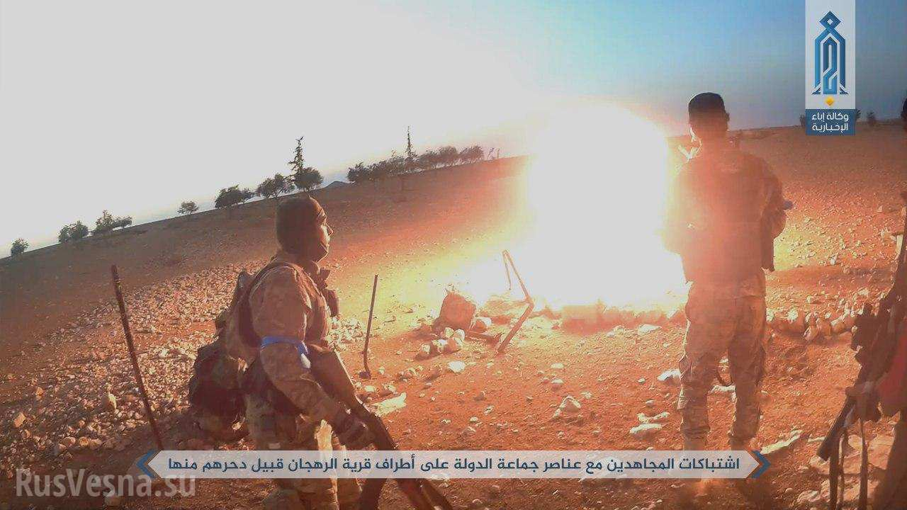 Бои и разорванные тела боевиков: «Спецназ Аль-Каиды» беспощадно уничтожает ИГИЛ в Центральной Сирии (+ВИДЕО, ФОТО 18+)