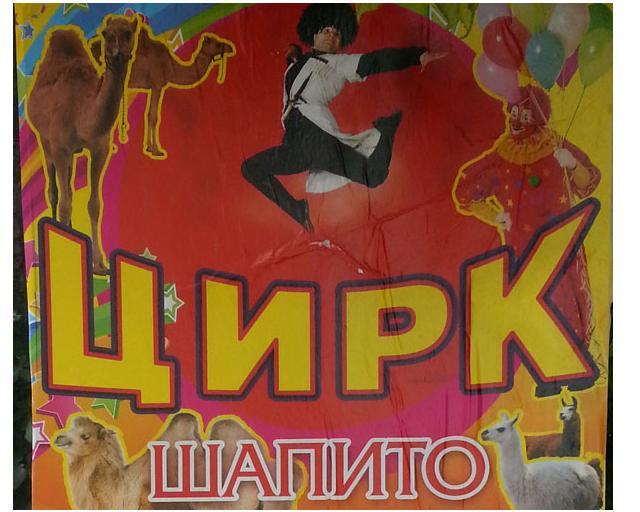 гастроли грузинчкого цирка