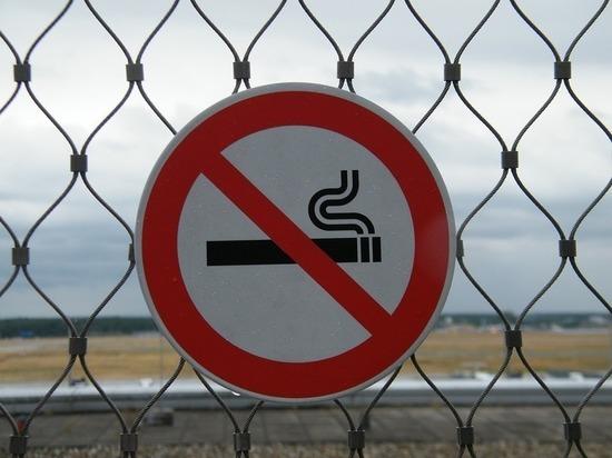 Запрет Медведева на выбрасывание окурков оценили эксперты: новое сотрясание воздуха