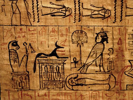 Найден двухтысячелетний папирус с увлекательной историей о спасении котенка